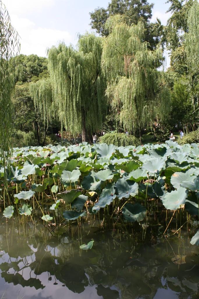 Suzhou, la Venise chinoise dans Beijing img_2151